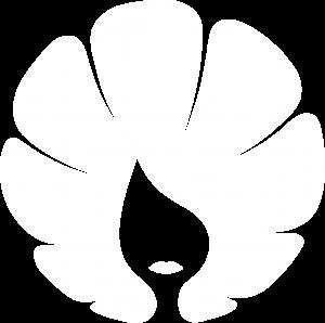 Kozmetična sobica pri Nini logo white